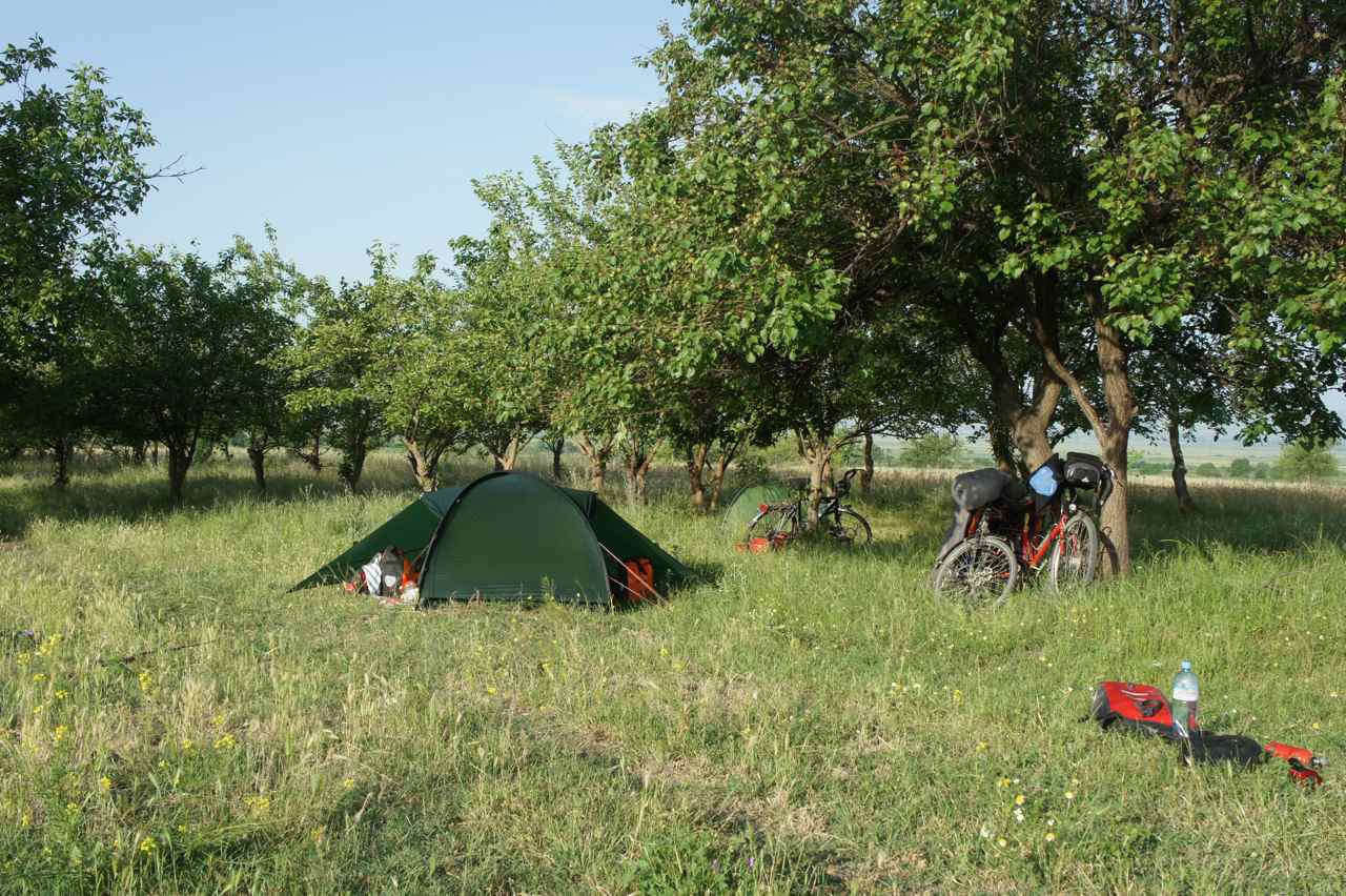 Our tent among the fruit trees