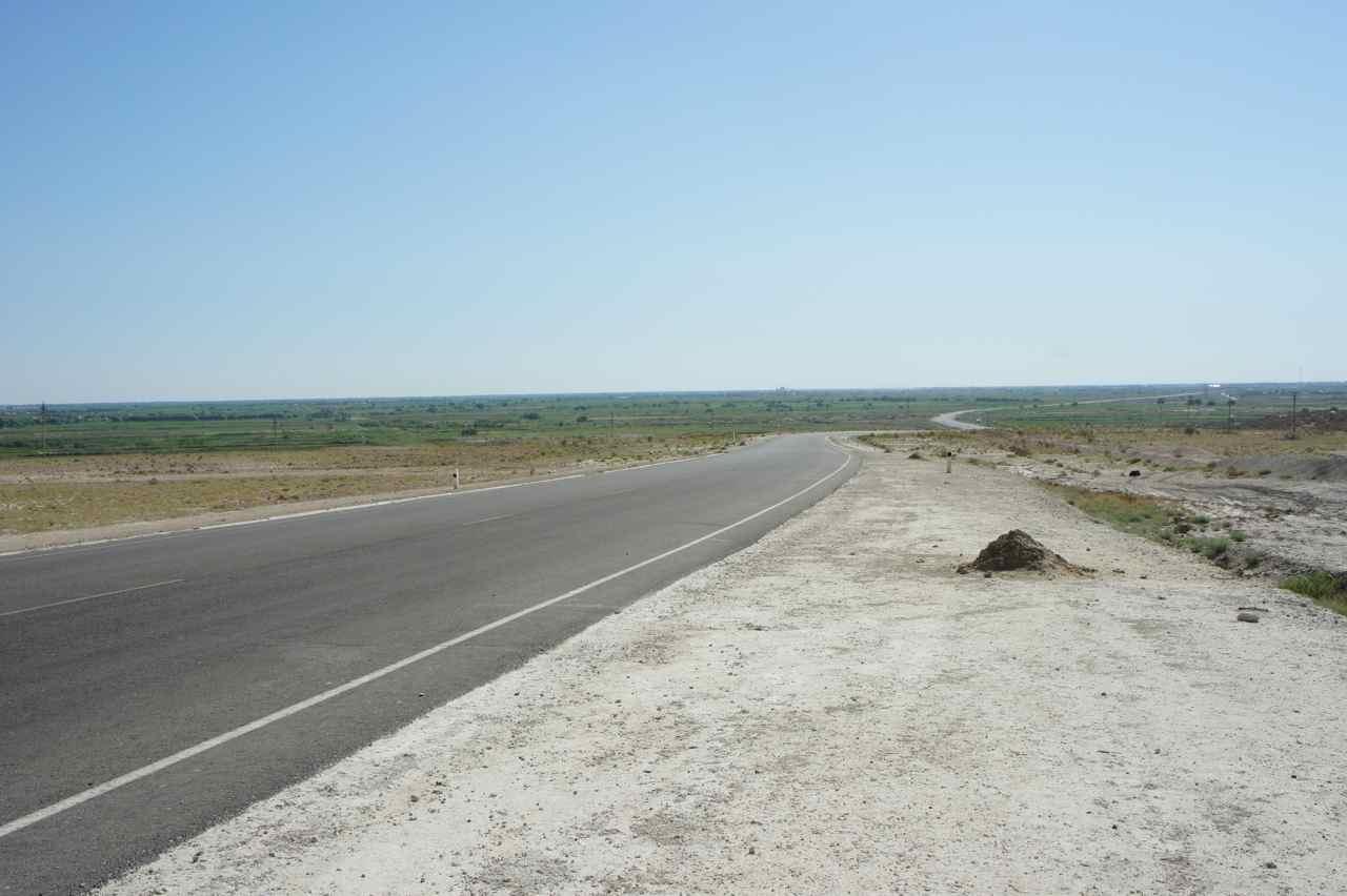 จู่ ๆ จากทะเลทรายเริ่มเห็นอะไรเขียว ๆ เพราะเราเข้าใกล้ที่ลุ่ม