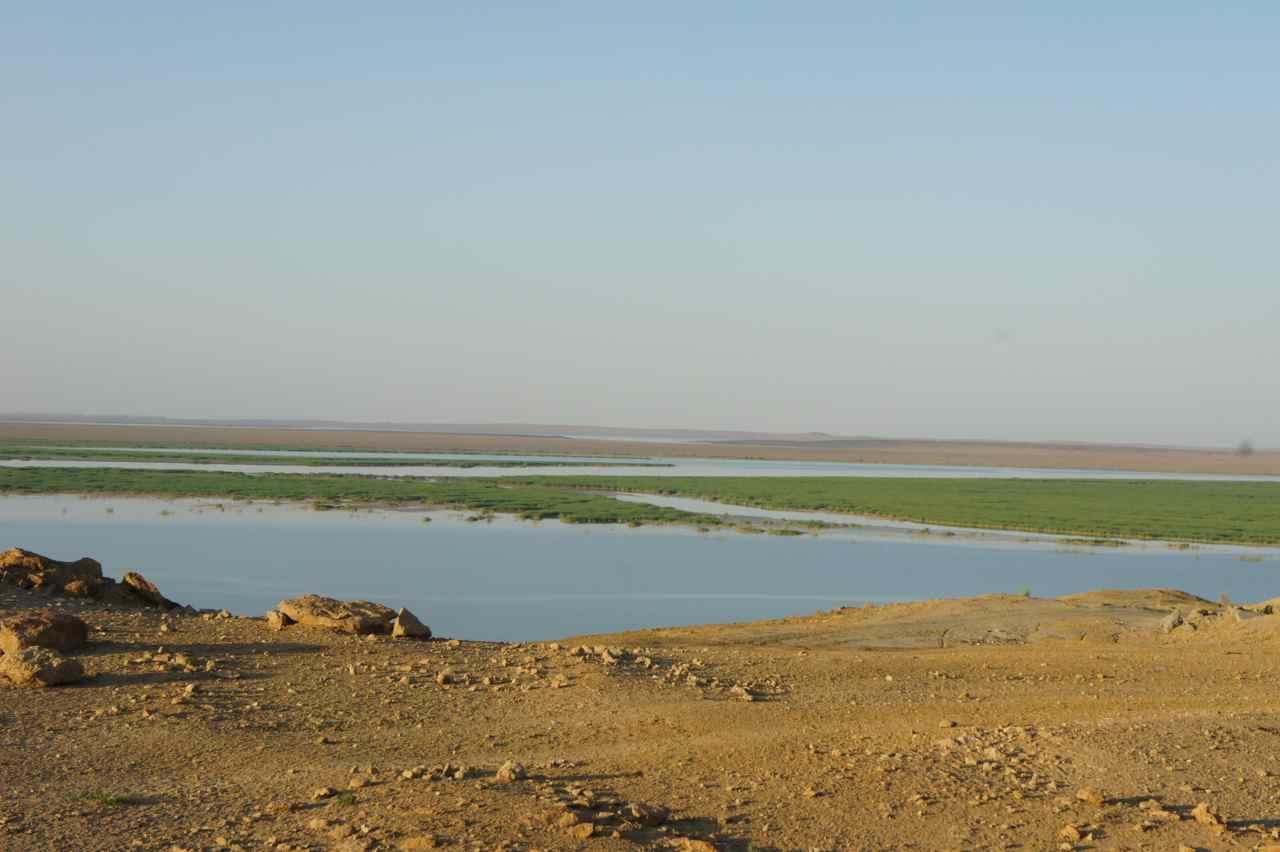 แม่น้ำกลางทะเลทราย แม่น้ำอามูดาร์ยา