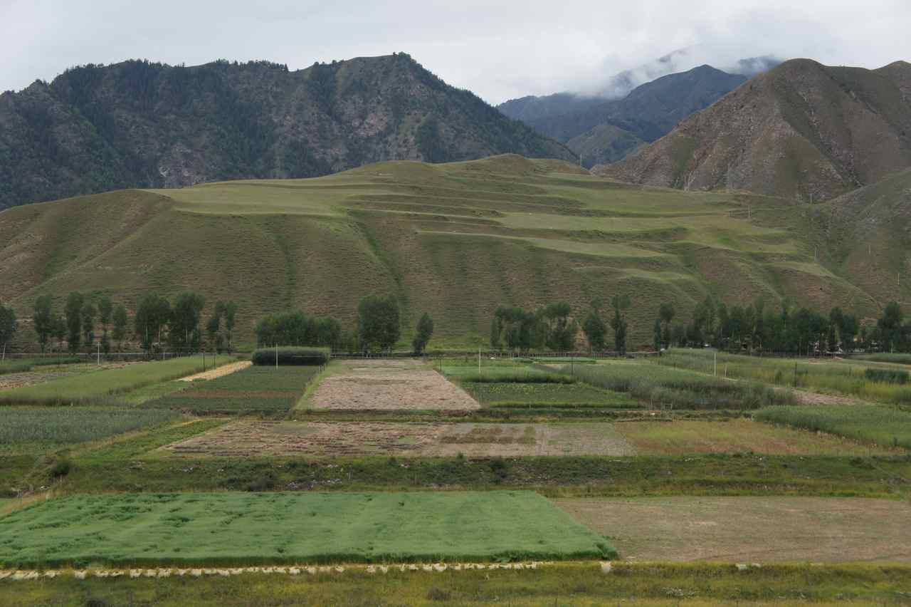 All flat areas seems to be used for growing something. They have even made terraces on the hill sides