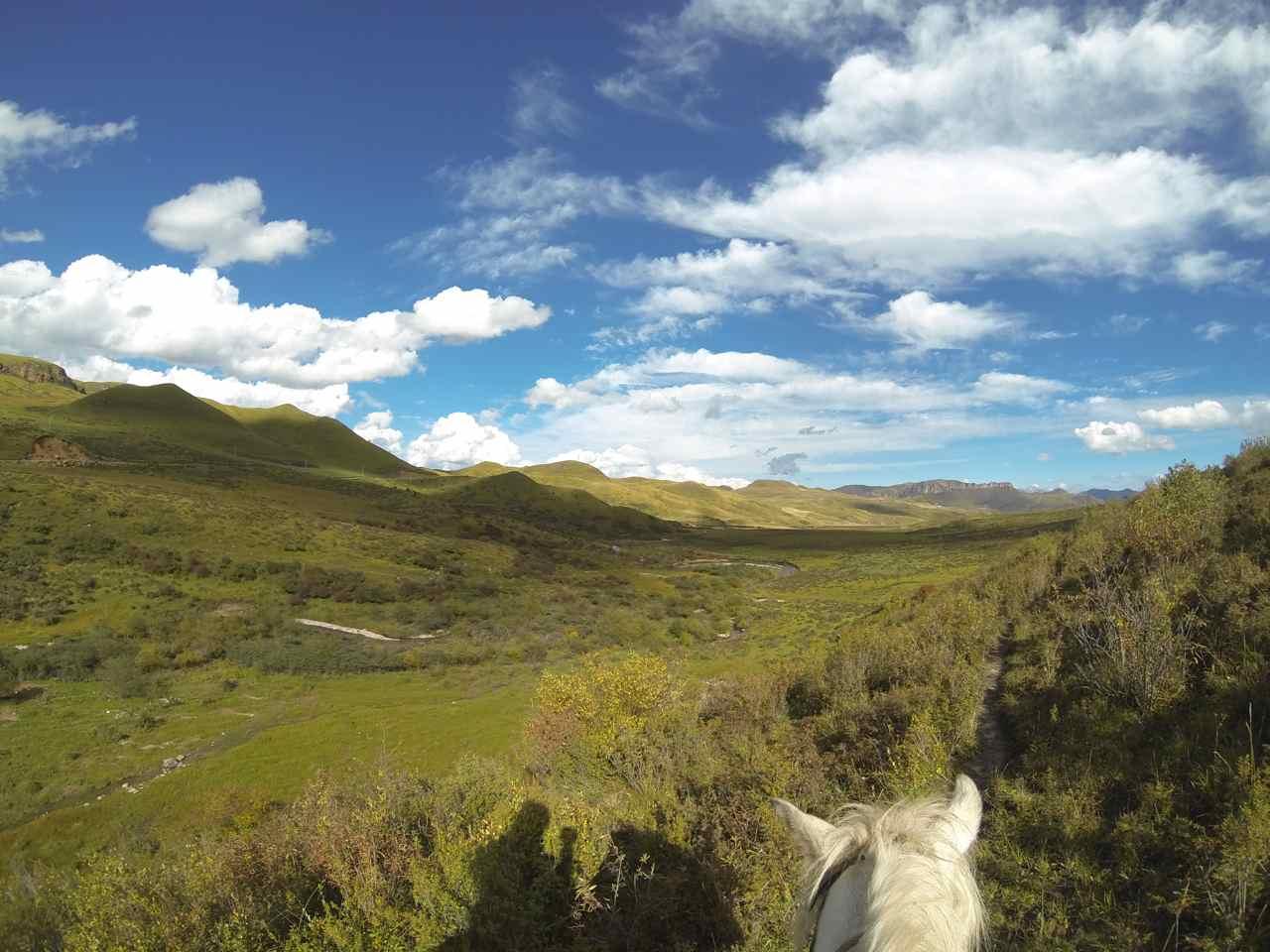 ครั้งแรกท่ีออกไปเดินในธรรมชาติบนหลังม้า สนุกดี