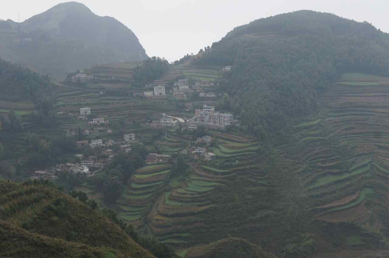 Terraces seen from a distance