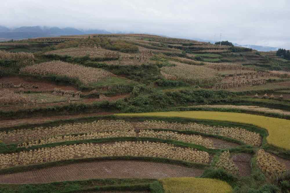 วิวข้างทางก่อนถึงคุนหมิง ช่วงเข้าคุนหมิงไม่่ค่อยมีรูปเพราะฝนตกเกือบทุกวัน ได้ไม่กี่ภาพช่วงครึ่งวันท่ีฟ้าเปิด ;-)
