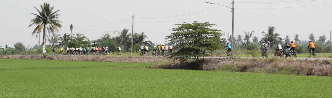 Riding on small roads between rice paddies